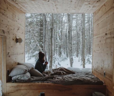 FONLASUR y TERLASUR. Protege la madera en ambientes extremos